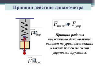 Принцип действия динамометра Принцип работы пружинного динамометра основан на