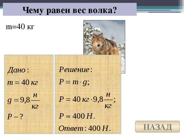 Домашнее задание: §§ 31 составить рабочий лист
