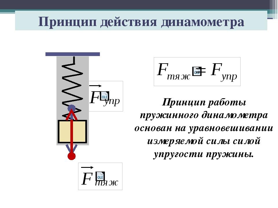 Принцип действия динамометра Принцип работы пружинного динамометра основан на...