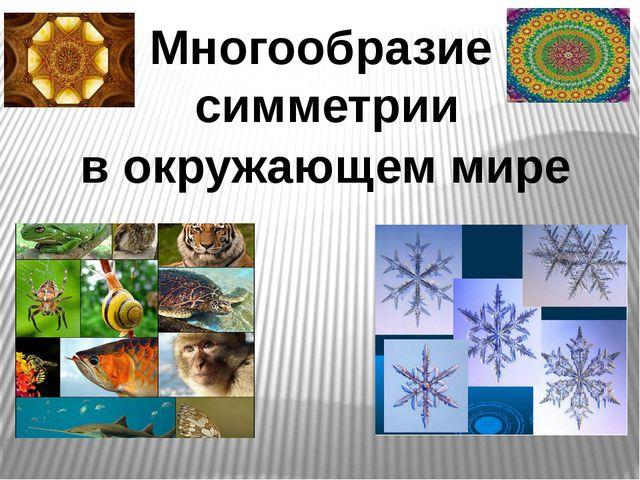Многообразие симметрии в окружающем мире