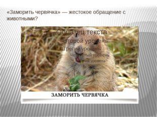 «Заморить червячка» — жестокое обращение с животными?