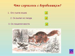 Что случилось с воробьишком? 1. Его съела кошка 3. Он лишился хвоста 2. Он вы
