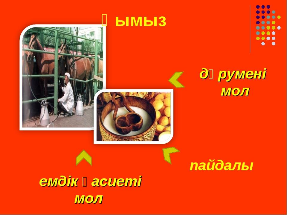 Қымыз пайдалы дәрумені мол емдік қасиеті мол
