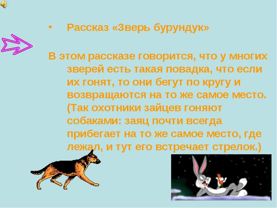 Рассказ «Зверь бурундук» В этом рассказе говорится, что у многих зверей есть...