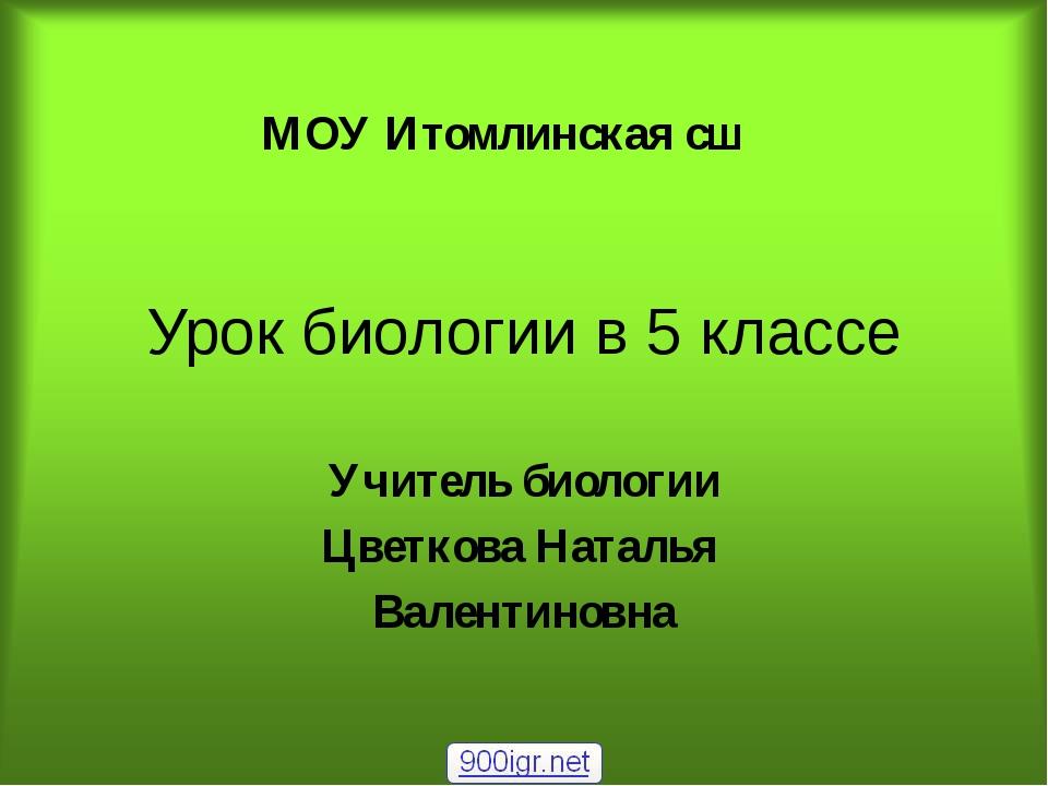 Урок биологии в 5 классе Учитель биологии Цветкова Наталья Валентиновна МОУ И...
