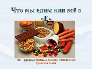 Что мы едим или всё о «Е» «Е» - вредные пищевые добавки химического происхожд