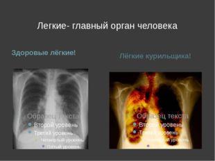 Легкие- главный орган человека Здоровые лёгкие! Лёгкие курильщика!