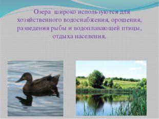 Озера широко используются для хозяйственного водоснабжения, орошения, разве