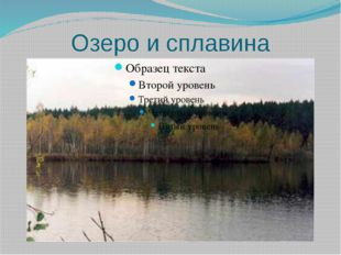 Озеро и сплавина