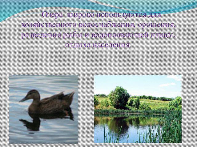Озера широко используются для хозяйственного водоснабжения, орошения, разве...