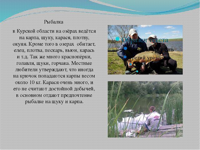 Рыбалка в Курской области на озёрах ведётся на карпа, щуку, карася, плотву...