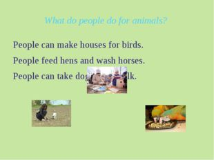 What do people do for animals? People can make houses for birds. People feed