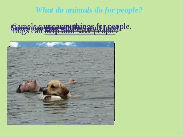 What do animals do for people? Camels can carry things for people. Dogs can h...