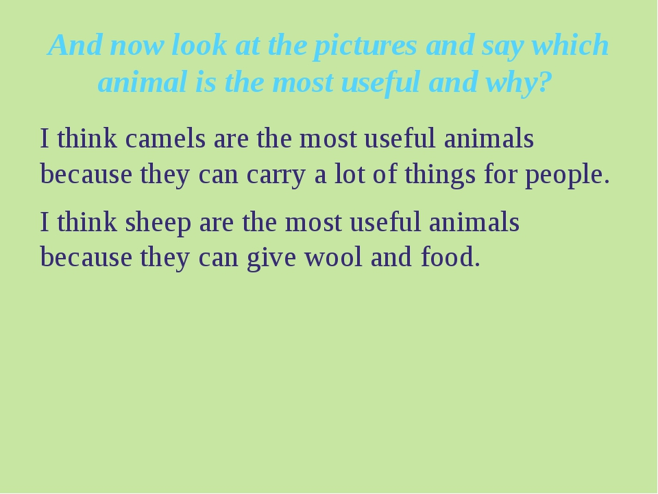 And now look at the pictures and say which animal is the most useful and why?...