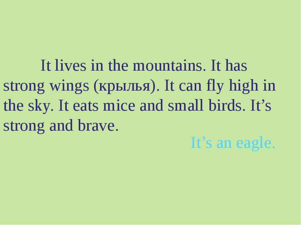 It lives in the mountains. It has strong wings (крылья). It can fly high in...