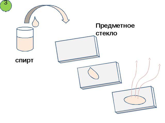 спирт Предметное стекло 3.