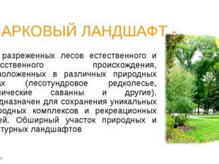 ПАРКОВЫЙ ЛАНДШАФТ - тип разреженных лесов естественного и искусственного прои