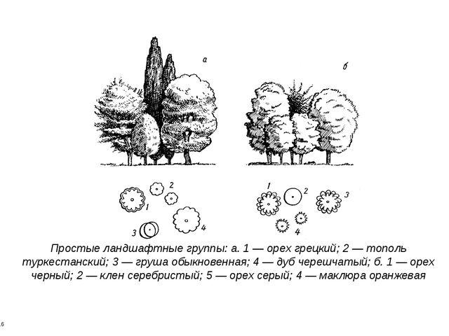 * * Простые ландшафтные группы: а. 1 — орех грецкий; 2 — тополь туркестанский...