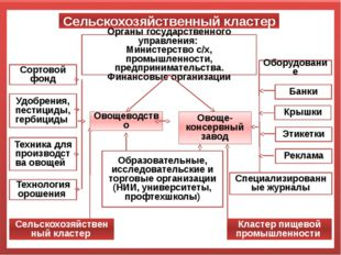 Сельскохозяйственный кластер Органы государственного управления: Министерство