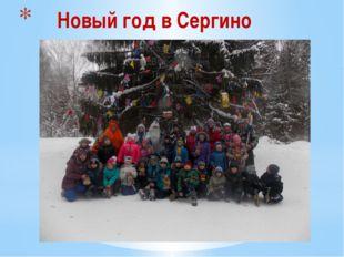 Новый год в Сергино