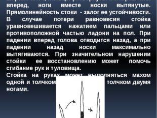 3. Стойка на руках Стойка на руках характеризует жесткое положение туловища с