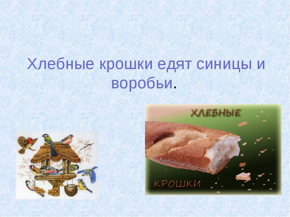 Хлебные крошки едят синицы и воробьи.