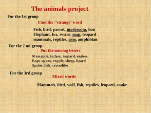 The animals project For the 1st group Find the ''strange''word Fish, bird, pa