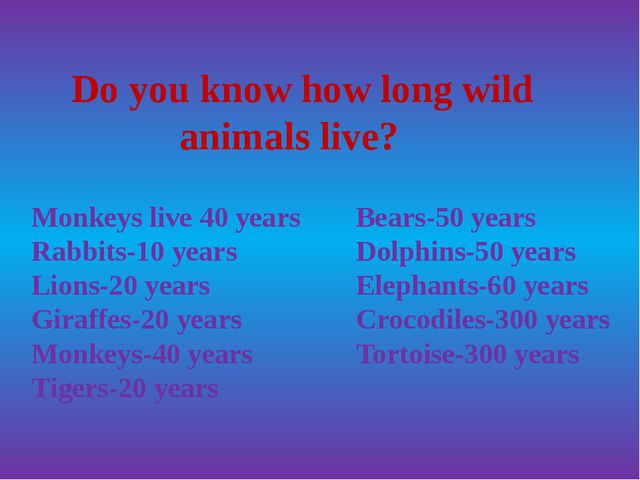 Do you know how long wild animals live? Monkeys live 40 years Rabbits-10 yea...