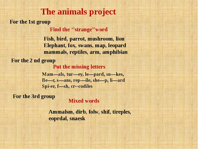 The animals project For the 1st group Find the ''strange''word Fish, bird, pa...