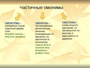 ОМОФОРМЫ – совпадение только отдельной формы слов: Лечу(от лечить – лечу (от