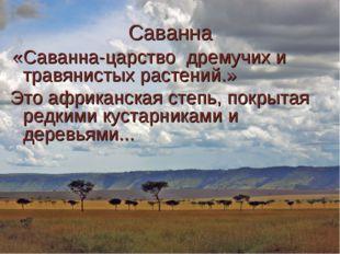 Саванна «Саванна-царство дремучих и травянистых растений.» Это африканская ст