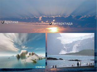 Антарктида Арктика
