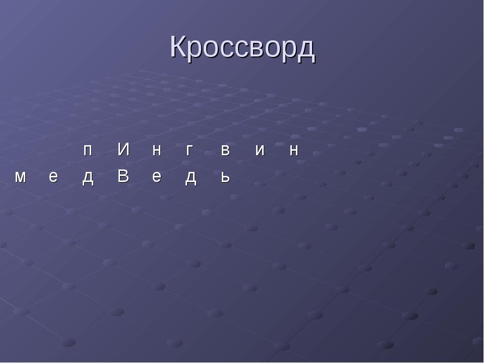 Кроссворд пИнгвин медВедь