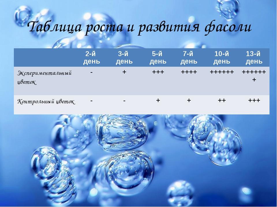 Таблица роста и развития фасоли 2-й день 3-й день 5-й день 7-й день 10-й день...