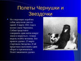 Полеты Чернушки и Звездочки На следующих кораблях собак запускали уже по одно
