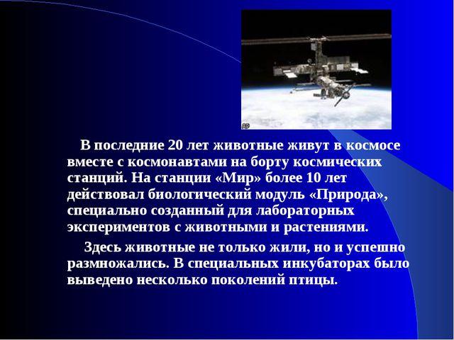 В последние 20 лет животные живут в космосе вместе с космонавтами на борту к...