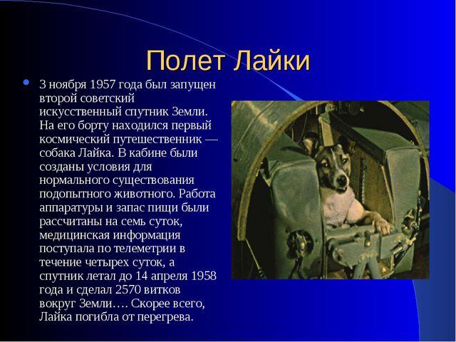 Полет Лайки 3 ноября 1957 года был запущен второй советский искусственный спу...