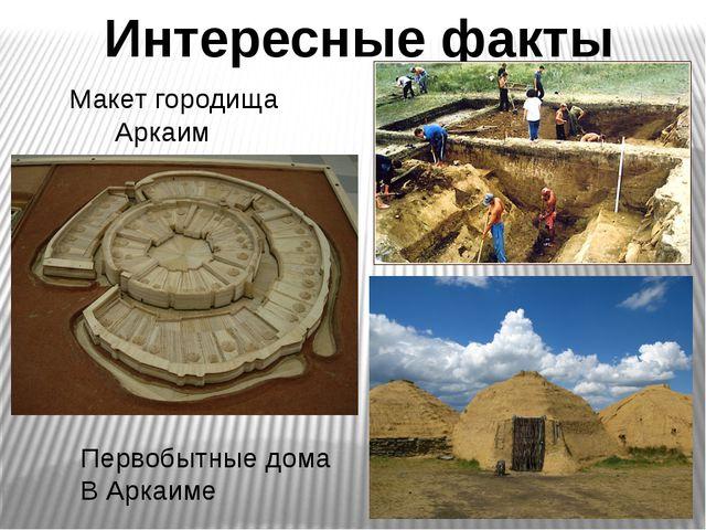Интересные факты Макет городища Аркаим Первобытные дома В Аркаиме