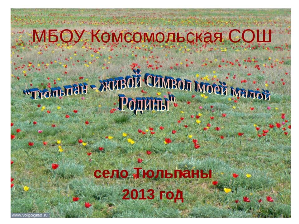 МБОУ Комсомольская СОШ село Тюльпаны 2013 год