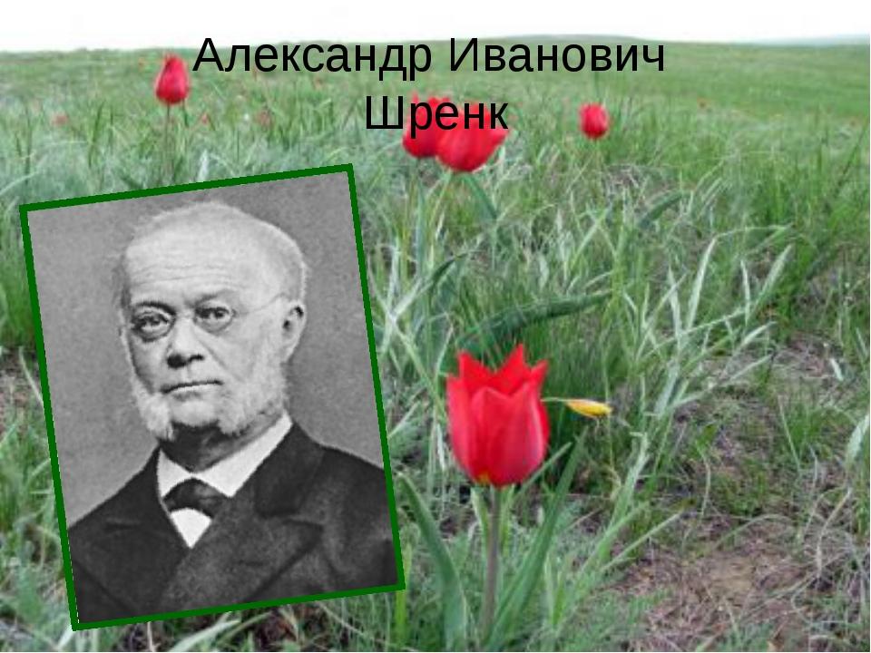 Александр Иванович Шренк