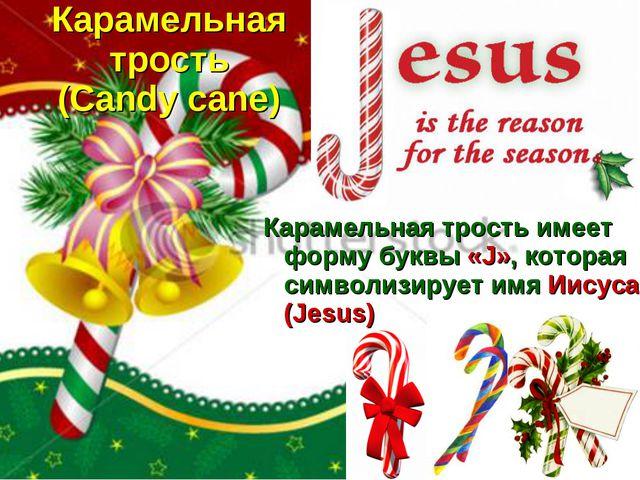 Карамельная трость (Candy cane) Карамельная трость имеет форму буквы «J», кот...