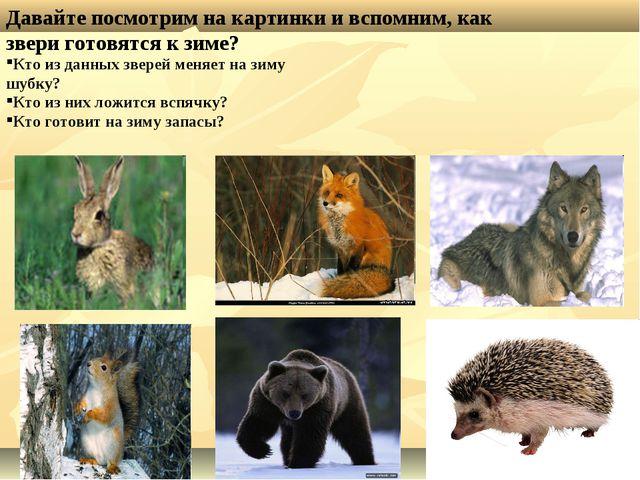 Давайте посмотрим на картинки и вспомним, как звери готовятся к зиме? Кто из...