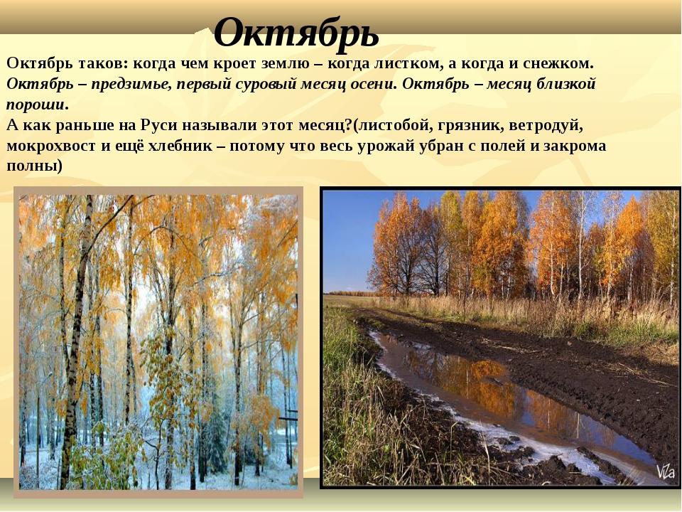 Октябрь Октябрь таков: когда чем кроет землю – когда листком, а когда и снежк...