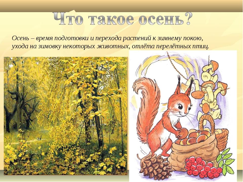 Осень – время подготовки и перехода растений к зимнему покою, ухода на зимовк...