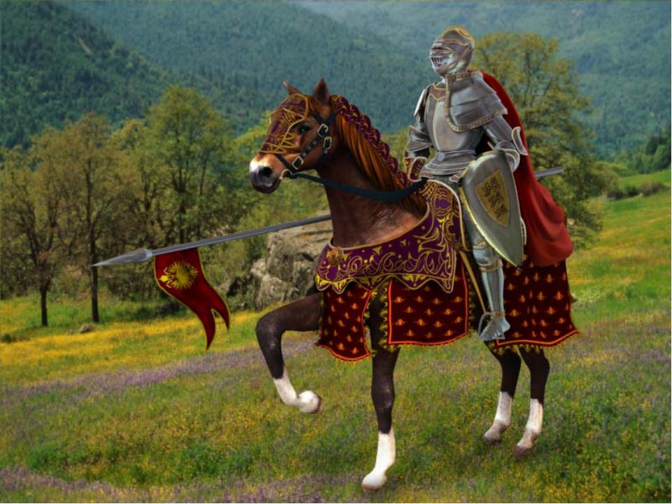 Рыцарь (ФОТО)
