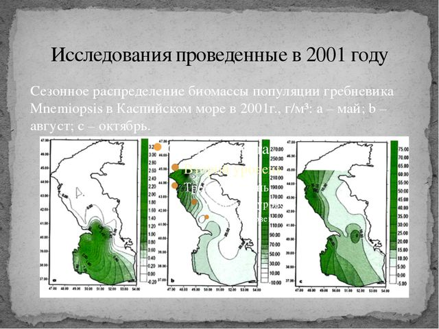 Исследования проведенные в 2001 году Сезонное распределение биомассы популяци...
