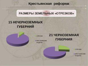 РАЗМЕРЫ ЗЕМЛЕВЛАДЕНИЯ Крестьянская реформа