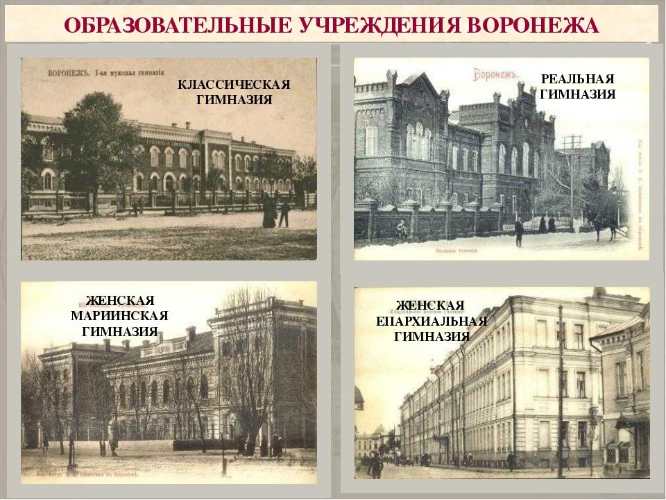 Государственный ивоенный деятель. Отличился вКрымской войне иРусско-турецк...