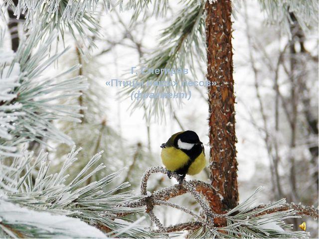 Г. Снегирёв «Птицы наших лесов» (фрагмент)