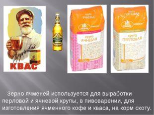 Зерно ячменей используется для выработки перловой и ячневой крупы, в пивовар